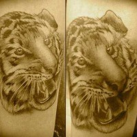 Tiger Face Arm Tattoo